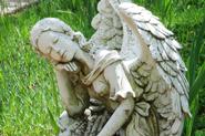 Angel-185-szd